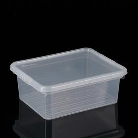 Контейнер для хранения с крышкой Basic, 3 л, 25×20×9 см, цвет прозрачный