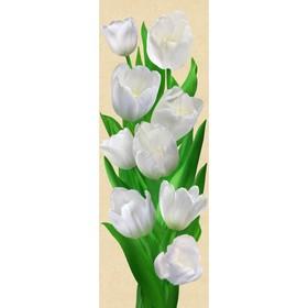 Фотообои Тюльпаны ЛЮКС 0,97х2,72 м (из 4 листа) Ош