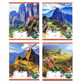 Тетрадь 12 листов клетка «Затерянный мир», обложка мелованный картон, МИКС