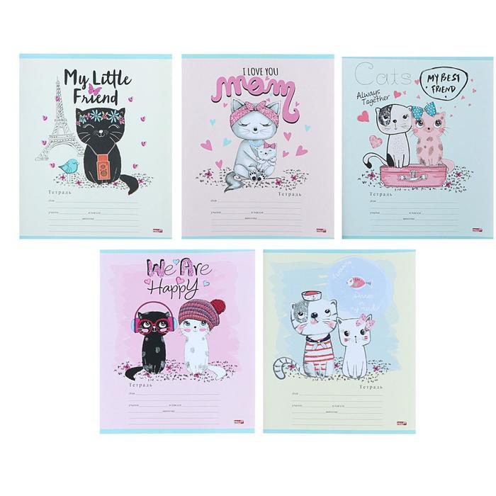 Тетрадь 12 листов косая линия «Счастливые котики», обложка мелованная бумага, МИКС