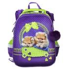 Рюкзак каркасный Hatber Ergonomic 37 х 29 х 17 см, для девочки, «Милые создания», сиреневый/зелёный