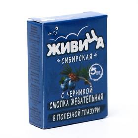 Смолка жевательная «Живица Сибирская» в глазури без сахара с черникой и  пчелиным воском