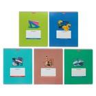 Тетрадь 12 листов клетка «Школьная коллекция», обложка мелованный картон, МИКС