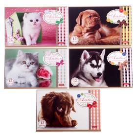 Альбом для рисования А5, 12 листов на скрепке Sweet pets, обложка мелованный картон, МИКС Ош