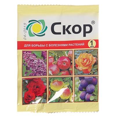 """Средство от  болезней растений """"Скор"""" ампула, 1 мл - Фото 1"""