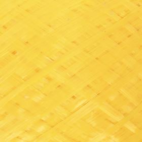 Пряжа 'Для вязания мочалок' 100% полипропилен 450м/120гр (жёлтый) Ош