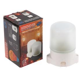Светильник НББ 01-60-001 УХЛ1, E27, 60 Вт, 220 В, IP65, до +125°, белый Ош