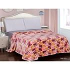 Плед «Бамбино», размер 150 × 200 см, цвет мультиколор, плюшевые мишки