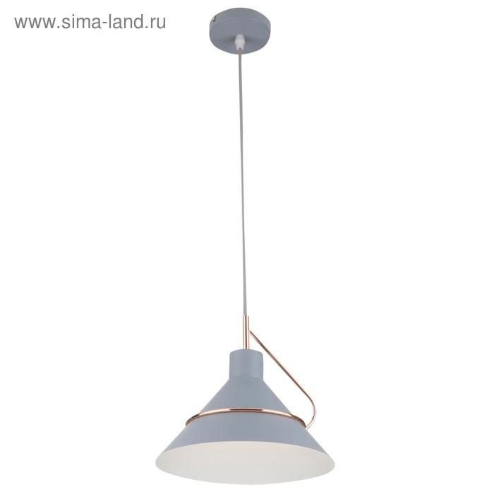 Светильник Amis 1x60Вт E27 серый