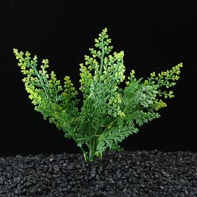 Растение искусственное аквариумное, до 13 см Ош