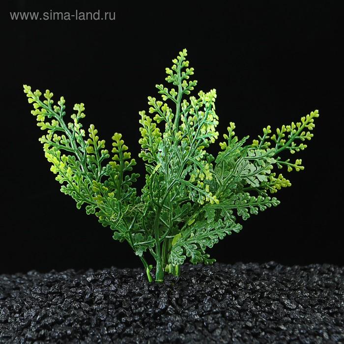 Растение искусственное аквариумное, до 13 см