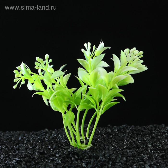 Растение искусственное аквариумное, до 11,5 см
