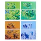 Тетрадь 48 листов в клетку Seasons, обложка мелованный картон, МИКС