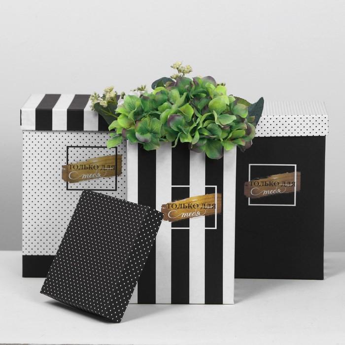 Набор коробок 3 в 1 «ЧБ», 18 × 18 × 25‒15 × 15 × 23 см