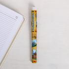 Ручка сувенирная «Смоленск»