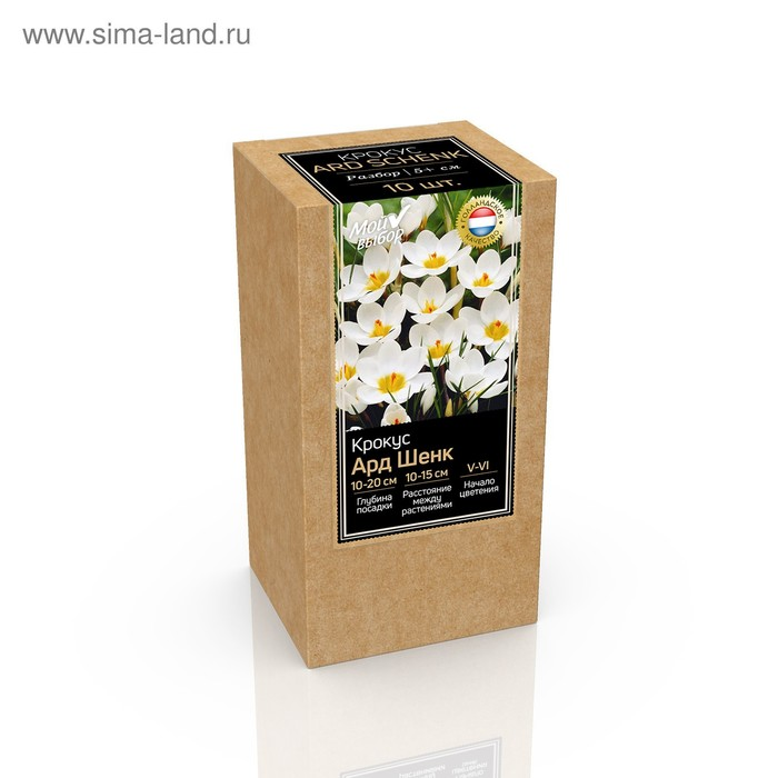 Крафт-коробка Крокус chrysanthus Ard Schenk, р-р 5/+, 10 шт