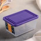 Ёмкость для продуктов 0,4 л, прямоугольная, цвет фиолетовый