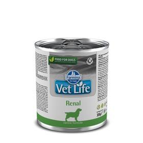 Влажный корм Farmina Vet Life Dog для собак с почечными заболеваниями, 300 г