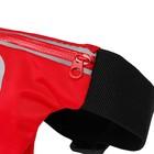 Спортивная сумка чехол на пояс LuazON, управление телефоном, отсек на молнии, красная - Фото 3