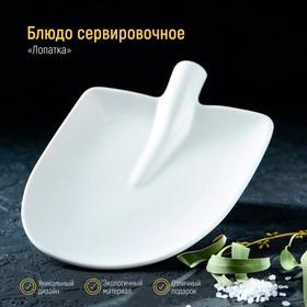 Блюдо Magistro «Лопатка», 24×18 см, цвет белый