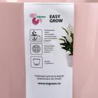 Кашпо с прикорневым поливом Easy Grow, 2 л, цвет английская роза - Фото 4