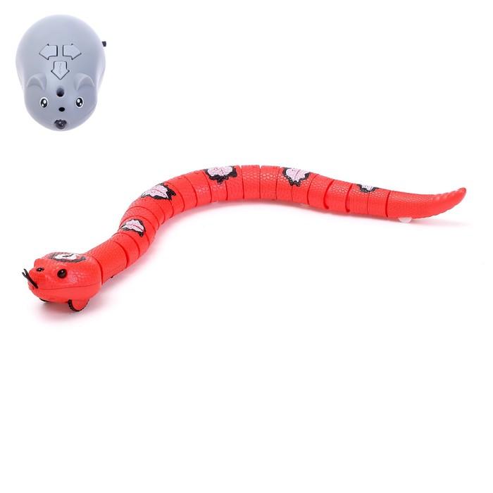 Змея радиоуправляемая Джунгли, работает от аккумулятора, цвета МИКС