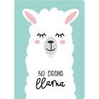 Блокнот А4, 40 листов на склейке «Лама. No drama», мягкая обложка, круглые углы, блок в точку
