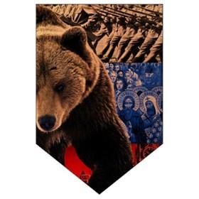Вымпел пятиугольный Skyway 'Медведь', 100х150, флаг, 1 шт Ош