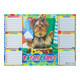 Расписание 'Собака' корзинка, А4 Ош