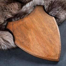 Медальон для охотничьих трофеев «Волк», крашеная, 33х25 см, массив бука Ош