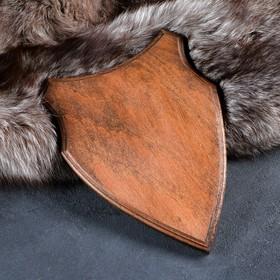 Медальон для охотничьих трофеев «Щит», крашеная, 28х19 см, массив бука Ош