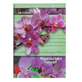Колледж-тетрадь А5, 160 листов в клетку 'Цветы', твёрдая обложка Ош