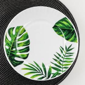 Тарелка обеденная Доляна «Лист папоротника», d=25 см, цвет белый
