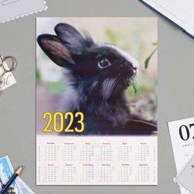 Календарь листовой А4 'Символ года - 2022 - 7' Ош
