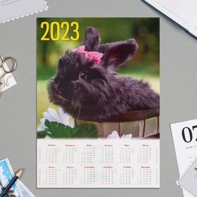 Календарь листовой А4 'Символ года - 2022 - 8' Ош