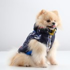 Куртка зимняя, XS (ОШ 18-22, ОГ 27-32, ДС 20 см), синяя