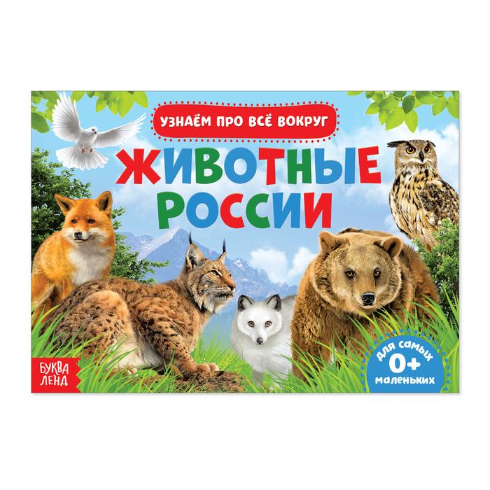 Обучающая книжка Животные России, 18 животных