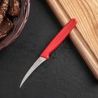 """Нож для чистки овощей """"Эконом"""", лезвие 8,5 см, цвет МИКС"""