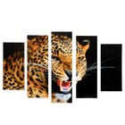 "Модульная картина ""Леопард"" (2-23х52; 2-24х70; 1-24х80) 120х80см"