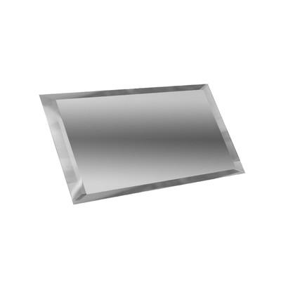 Прямоугольная зеркальная серебряная матовая плитка с фацетом 10 мм 240х120 мм