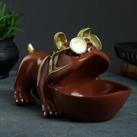 Шкатулка для мелочей 'Бульдог' шоколад 16х27см Ош