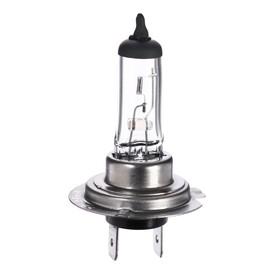 Галогенная лампа Cartage H7, 55 Вт, 12 В Ош