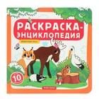 Раскраска-энциклопедия «Животные леса»
