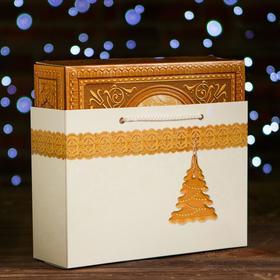 Коробка картонная 'Шкатулка' + пакет, 27 х 8,5 х 19 см Ош