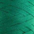 """Пряжа-шнур """"Ribbon"""" 40% полиэстер, 60% хлопок 125м/250гр (759 зелёный)"""