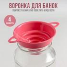 Воронка для банок 4 диаметра, верхний d=10 см, цвет МИКС - Фото 1