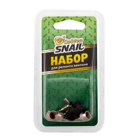Набор Golden Snail, для ремонта вентиля Ош