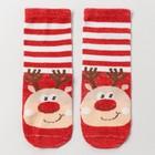 Носки детские «Лось», цвет красный, размер 18-20