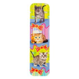 Закладки 'Кошки' глиттер Ош