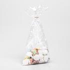 Пакет подарочный пластиковый «Новогоднее поздравление», 15 х 30 см